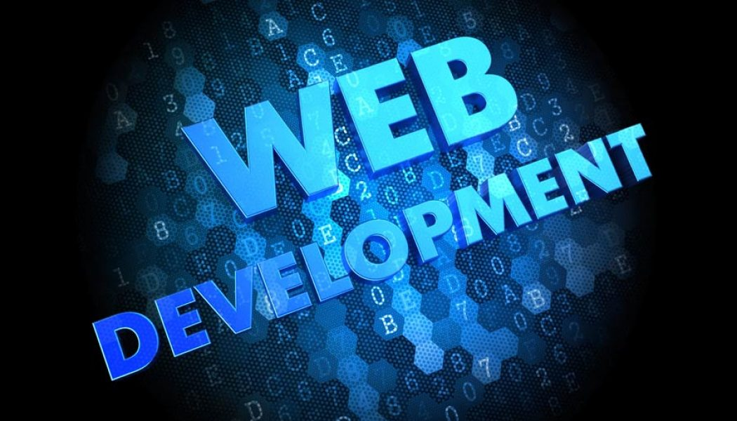 How a Professional Website Developer Can Help Your Business