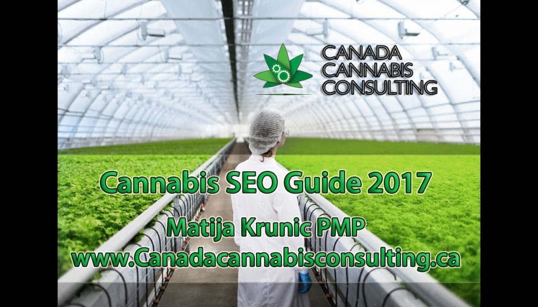 BEST Cannabis SEO Guide 2017 – Learn to Rank!