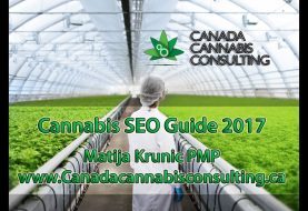 BEST Cannabis SEO Guide 2017 - Learn to Rank!