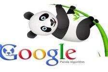 Google Panda Bangla Tutorial # Contact: 01764608434