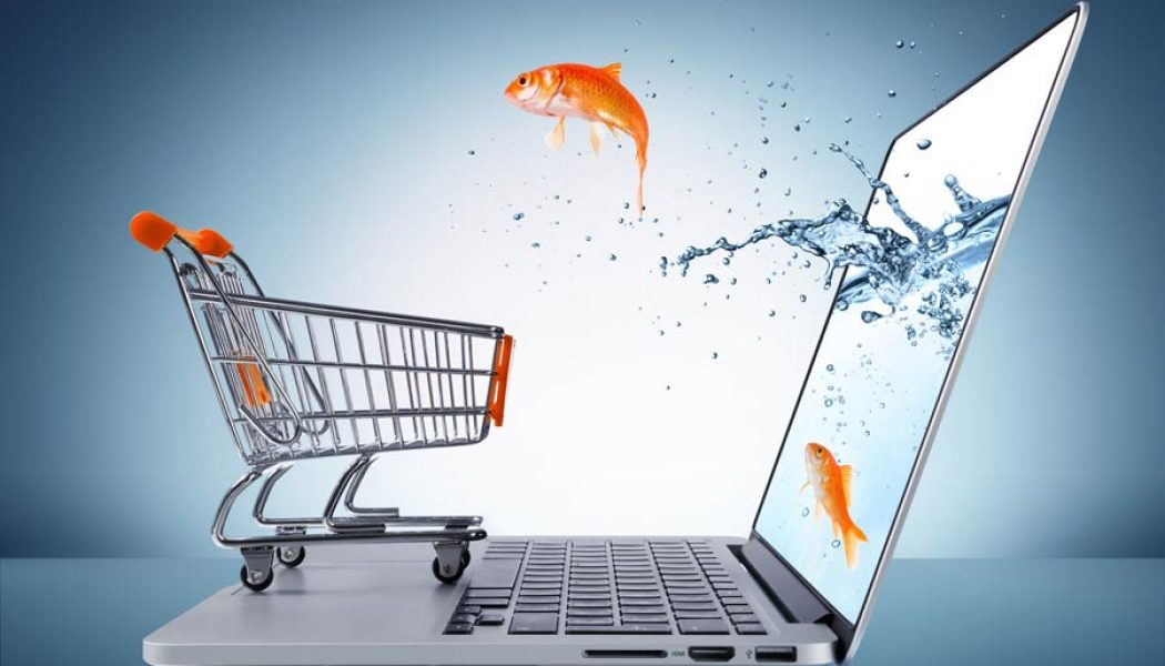How eCommerce Marketing Helps You