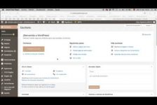 Configurar Sitemap con Yoast SEO para google search console, 2018